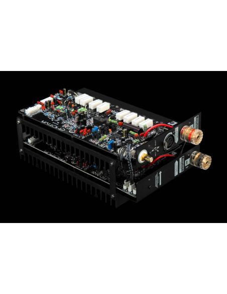 amplificatore Emotiva XPA DR1, modulo amplificazione