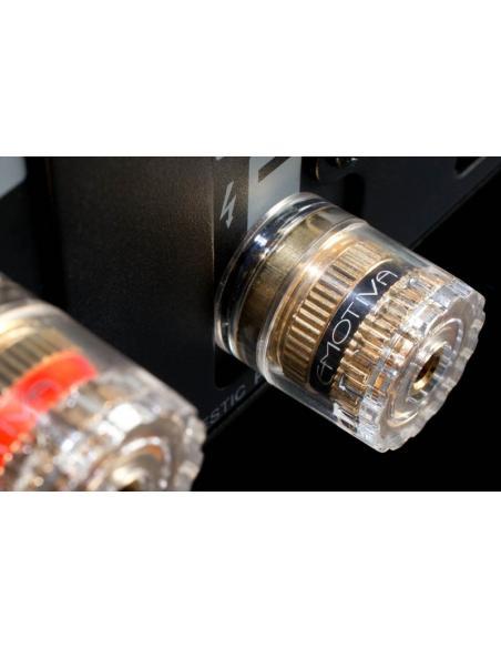 amplificatore Emotiva XPA-DR3, connettori
